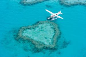 plane-at-heart-reef-7299